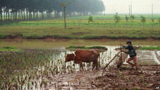 Nguyễn Hưng Quốc – Cải cách ruộng đất và các di sản
