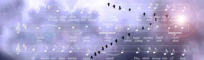Trần Việt Trình – Tung cánh chim tìm về tổ ấm – Tản mạn về chính sách chiêu hồi của VNCH