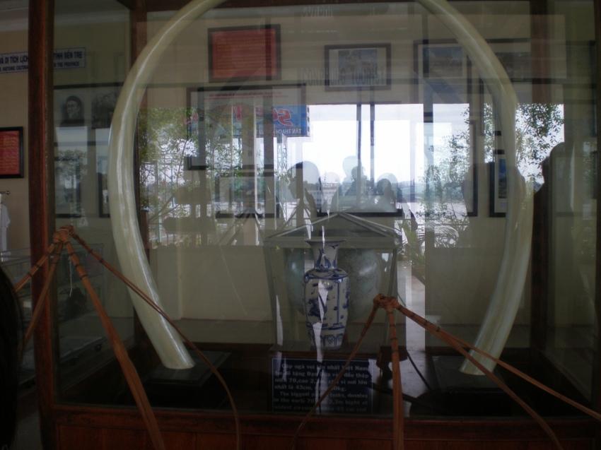 Khi ông Đạo Dừa  ra tranh cử tổng thống năm 1967, có một tín đồ tặng ông một cặp ngà voi, mỗi chiếc dài 1,8m, nặng 45kg, có đường kính 0,5m. Nay cặp ngà voi này được công nhận là cặp ngà voi lớn nhất Việt Nam, hiện đang được trưng bày ở phòng khách Tỉnh ủy ( Cộng sản Việt Nam) tại Bến Tre.
