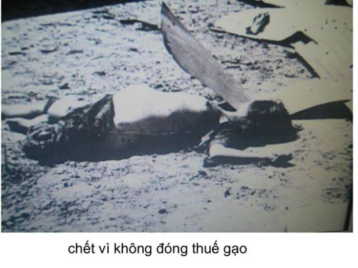 Bị giết vì không đóng thuế gạo cho Việt cộng