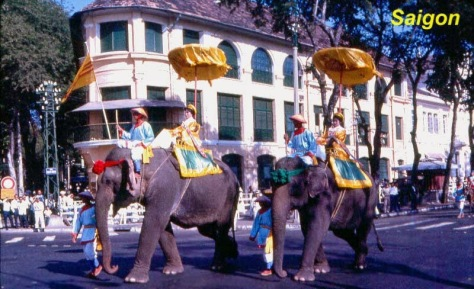 Diễn biến của sự kiện khiến người xem không thể không so sánh nó với thời Việt Nam Cộng Hòa, năm nào con voi cũng được đưa đi diễu hành bằng voi thiệt và người cỡi cũng nghiêm trang lộng lẫy với cờ lộng huy hoàng [xem hình]. Ngoài ra, để lấy lòng Trung Quốc hơn nữa, Nguyễn Tấn Dũng cũng ít nhứt có thêm 2 hành động cụ thể, đó là: