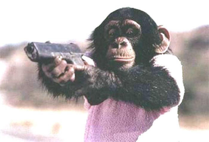 Trò Khỉ