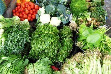 Rau quả đều được phun chất kích thích tăng trưởng và diệt sâu bọ, thậm chí là cả rau quả chính vụ thì cũng phun.